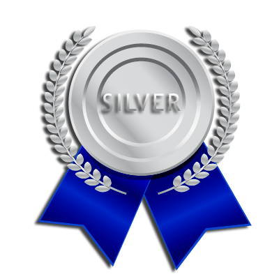 Silver SEO Package